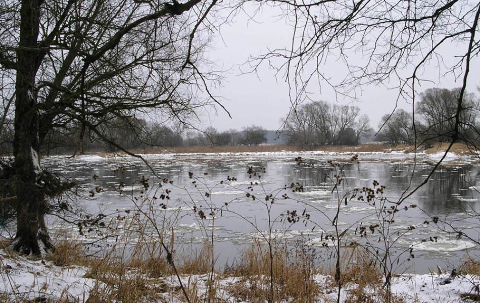 Elbe abwärts Dessau
