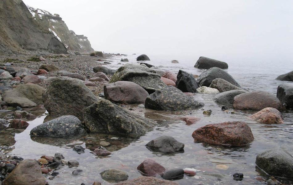 Steilküste auf dem Darß (Fischland)