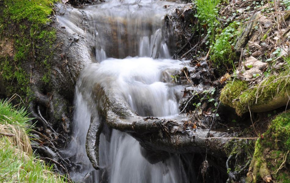 Wasserfall eines kleinen Wiesenbaches