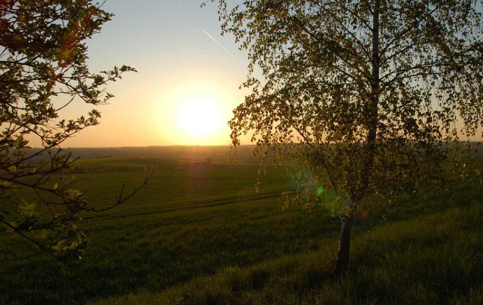 Abendsonne in Mittelsachsen