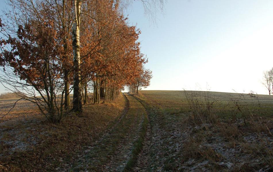 Feldweg im Winter, Lehmberg bei Ossig