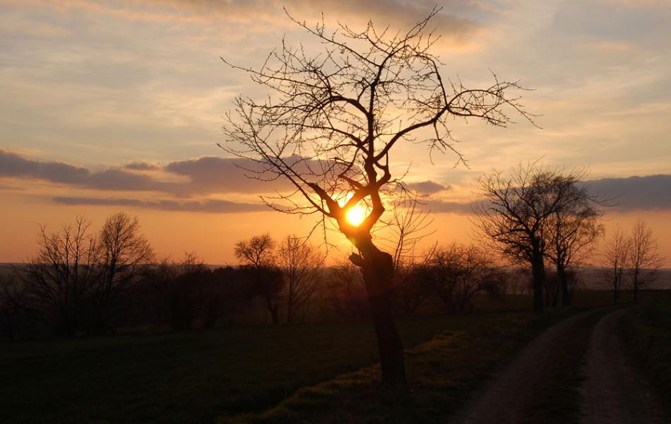 Sonnenuntergang im Mittelsächsischen