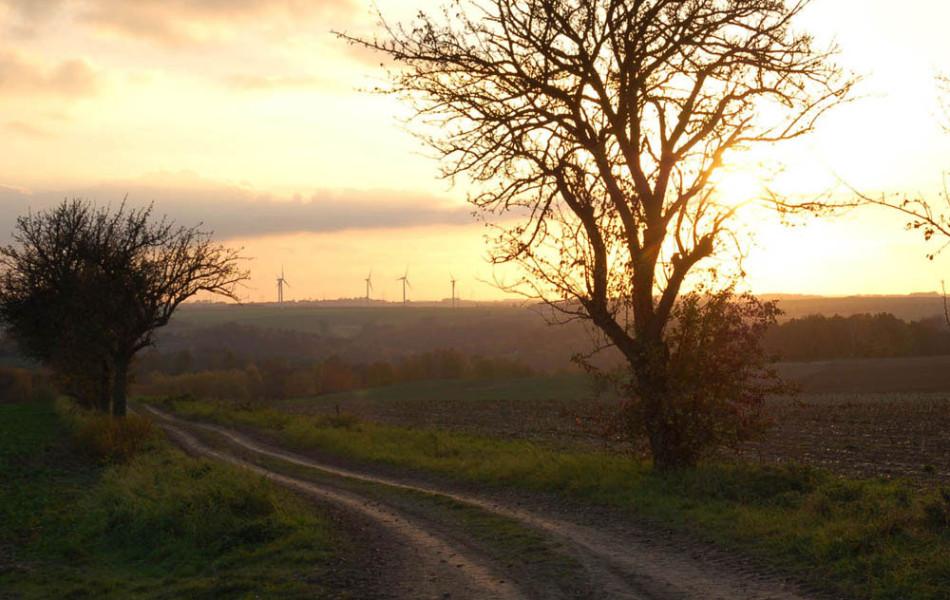 Sonnenuntergang und Windmühlen im Mittelsächsischen