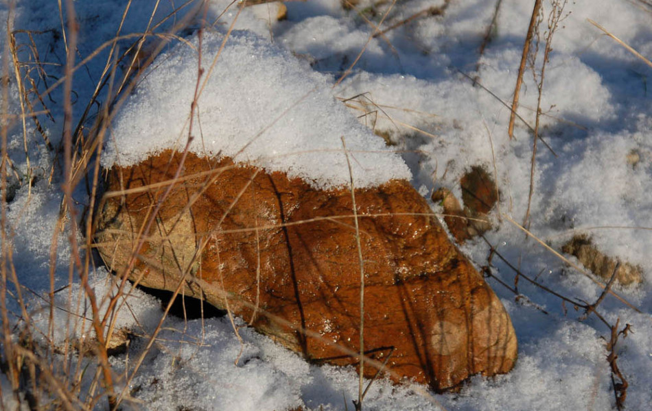 Stein wärmt Schnee